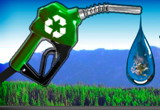 Vancouver Biodiesel Cooppng